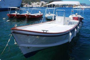 Ponza noleggio barche isola di ponza prenota ora for Barca lancia vetroresina